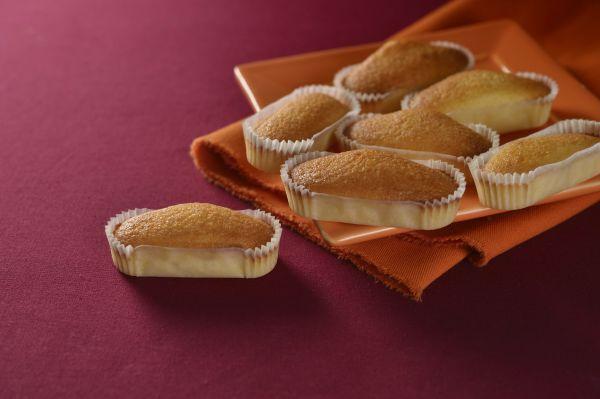 Taranis Rührkuchen Aprikosengeschmack
